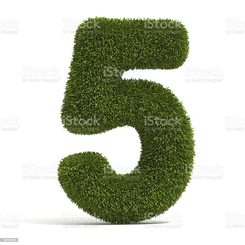 The Number 5 - Grass royalty-free stock photo