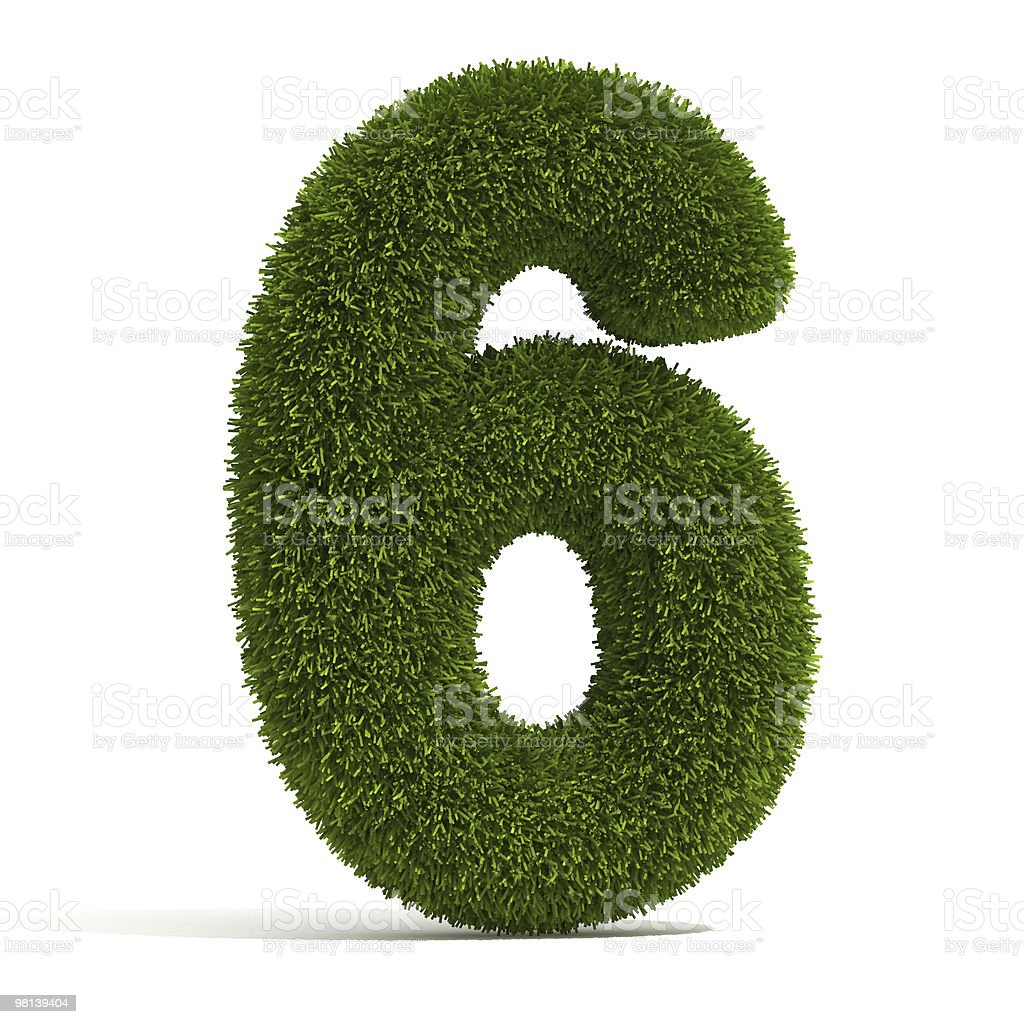 The Number 6 - Grass royalty-free stock photo