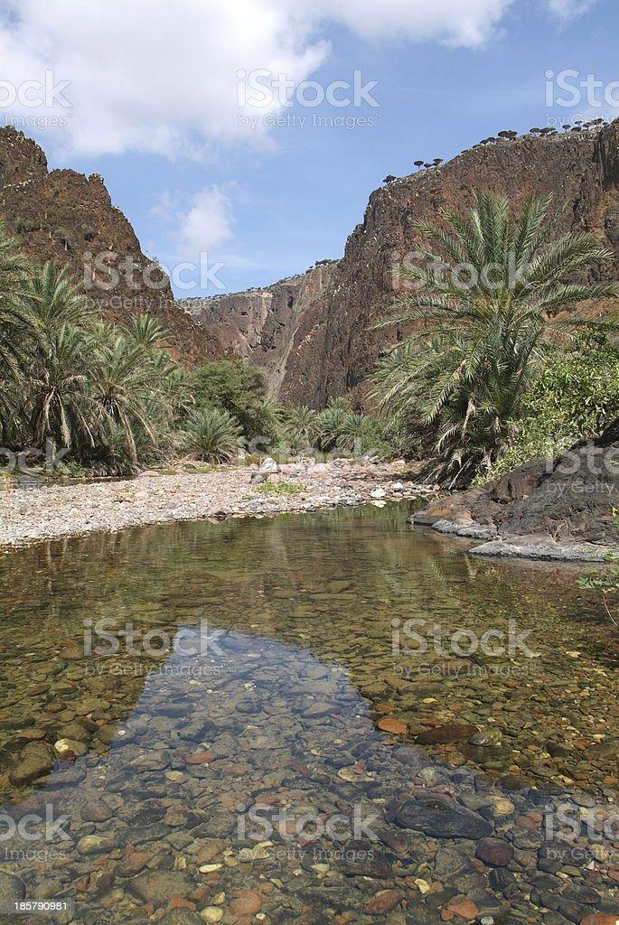 The oasis of Wadi Daerhu on Socotra island, Yemen stock photo
