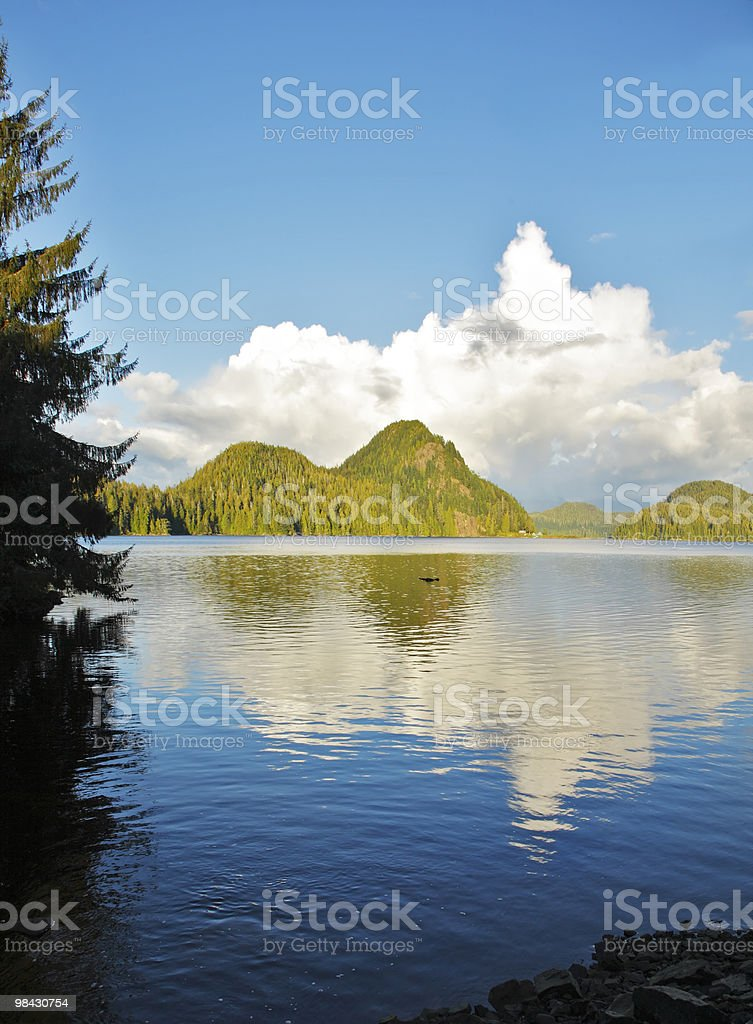 The ocean passage. Island Vancouver royalty-free stock photo