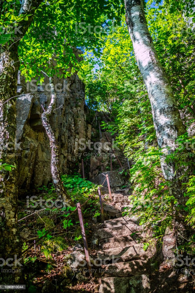 The Ocean Path Trail in Acadia National Park, Maine stock photo