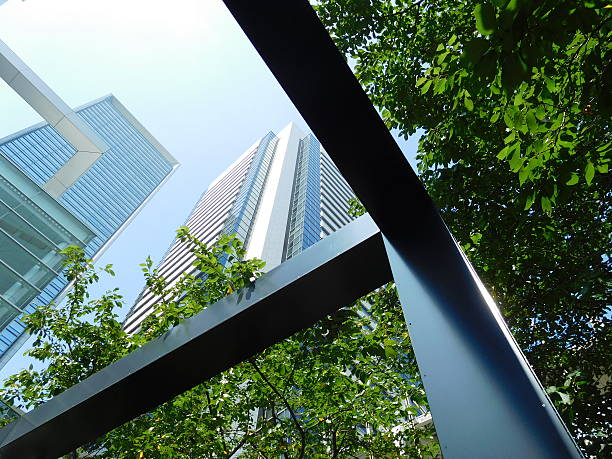 The office buildings under the blue sky with trees – Foto