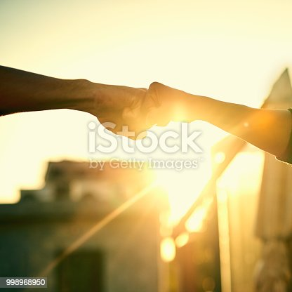 istock The official greeting of bros 998968950