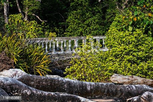 The old footbridge among green bushes.