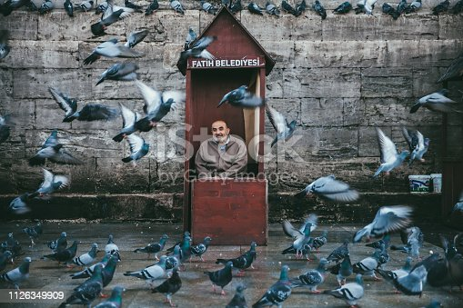The senior seller of grains for birds is seating in the cabin by the New Mosque and Egyptian Bazaar and watching the pigeons at Fatih square in Istanbul,Turkey