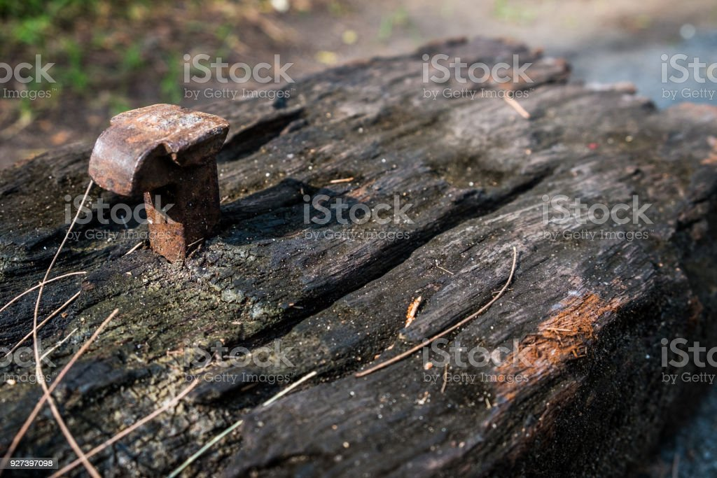 The old railroad tie with old nail in morning sun stock photo