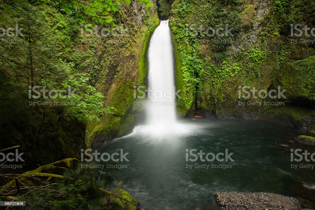 The one and only, Wahclella Falls stock photo