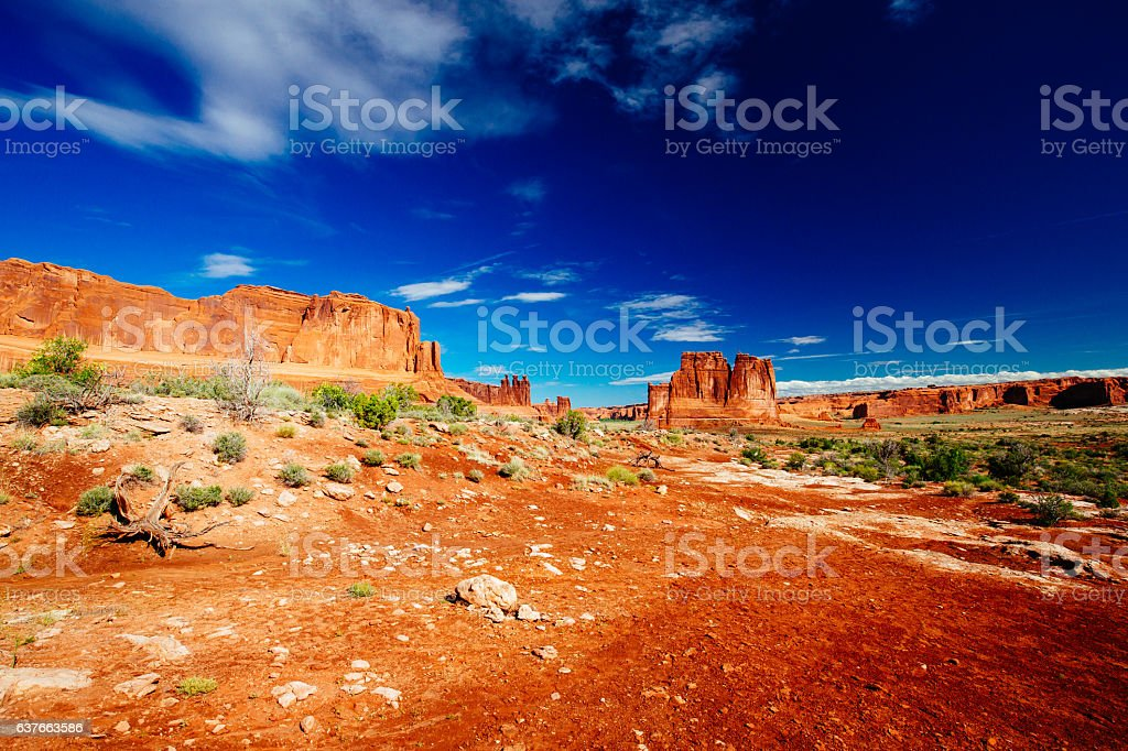 The Organ sandstone, Arches National Park, Utah, USA. stock photo