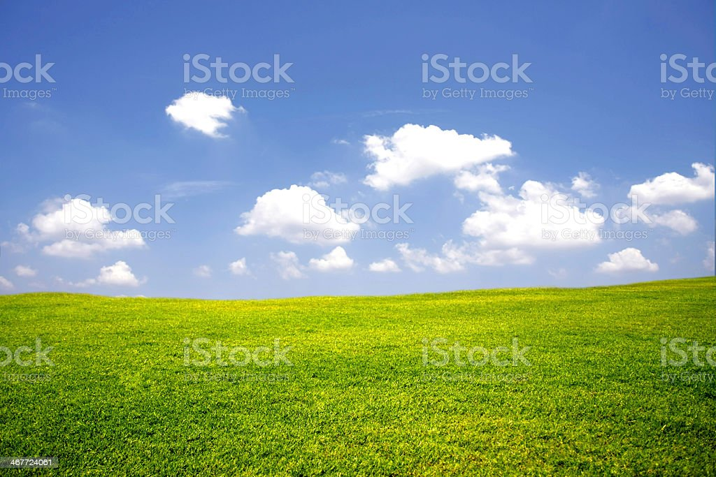 The original Windows opening screen of a green meadow royalty-free stock photo
