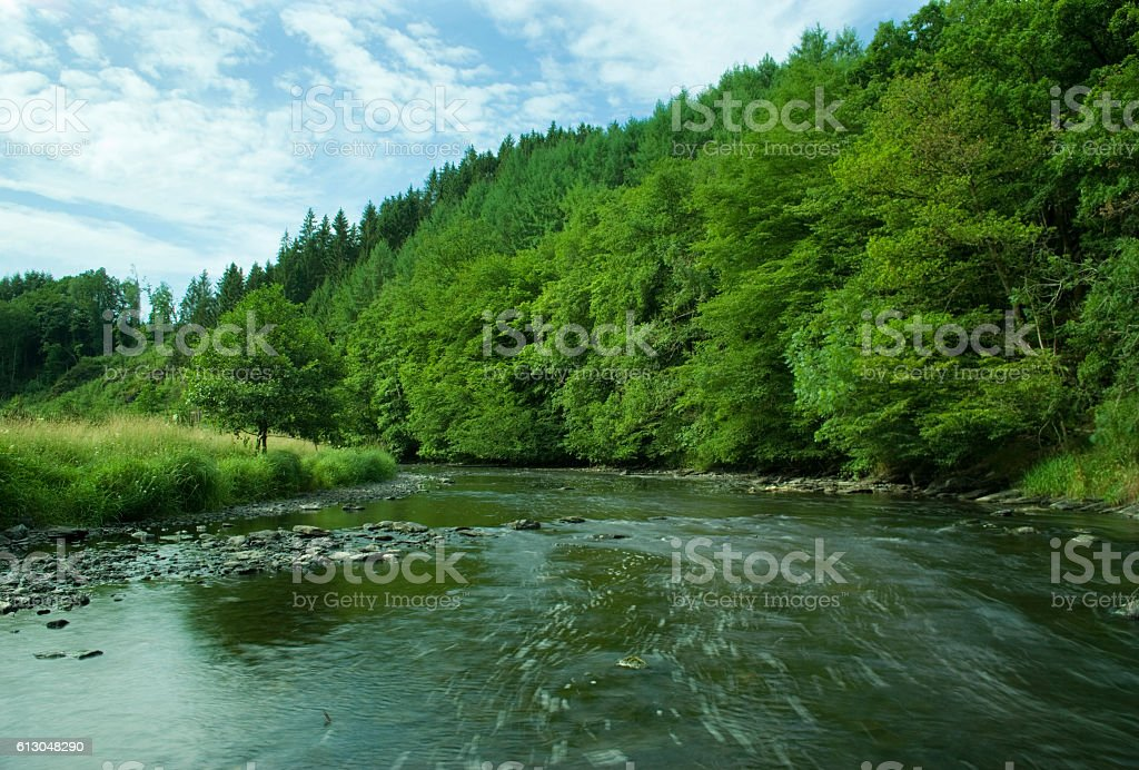 The Ourthe river running wild surrounded by green forest foto