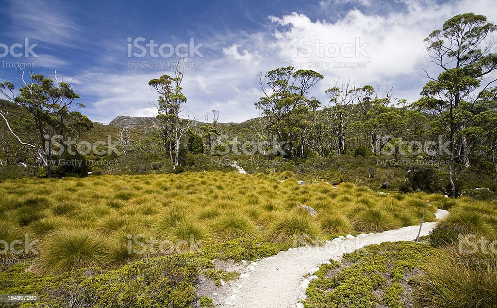 The Overland Track royalty-free stock photo