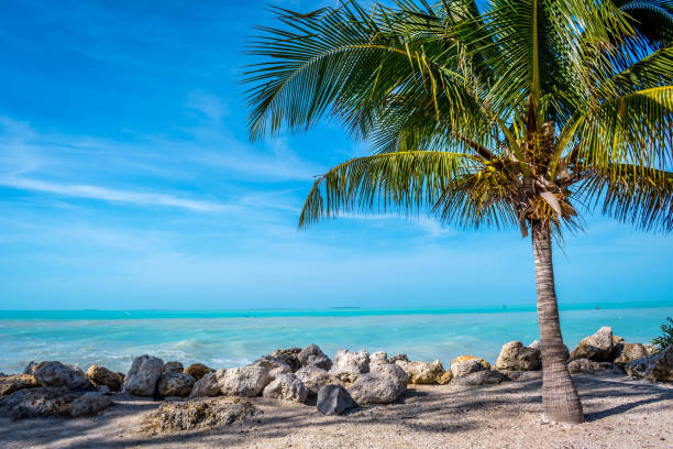The overlooking view of the shore in Key West, Florida stock photo