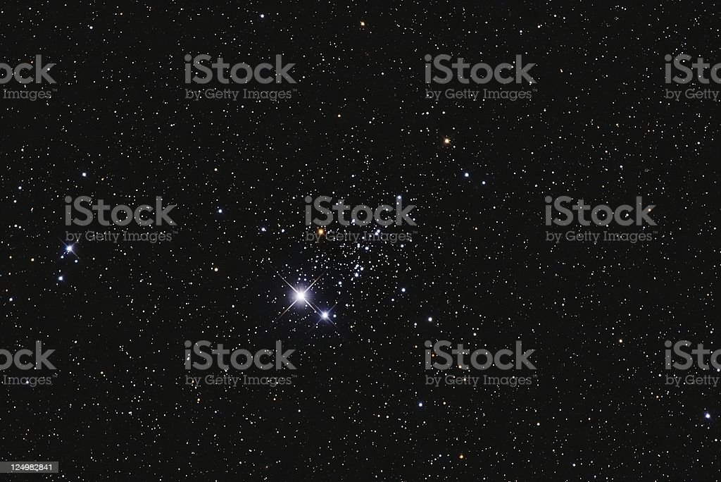 The Owl Cluster royalty-free stock photo