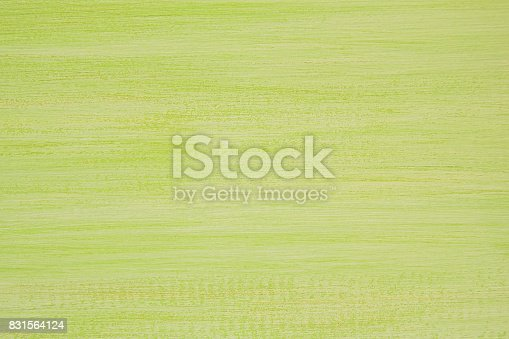 istock The painted green and white wooden textured background. 831564124