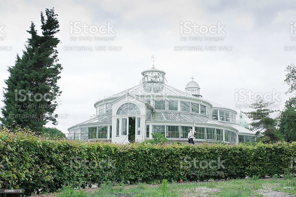 The Palm House stock photo