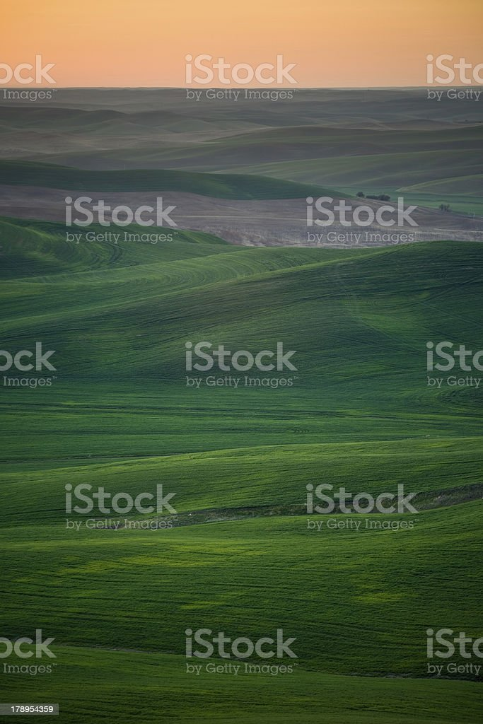 The Palouse Hills at Sunset from Steptoe Butte royalty-free stock photo