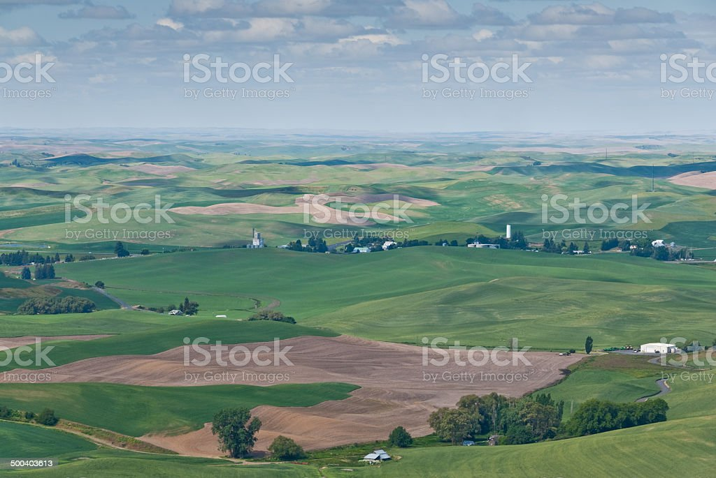Palouse Overview - Royalty-free Agricultural Activity Stock Photo