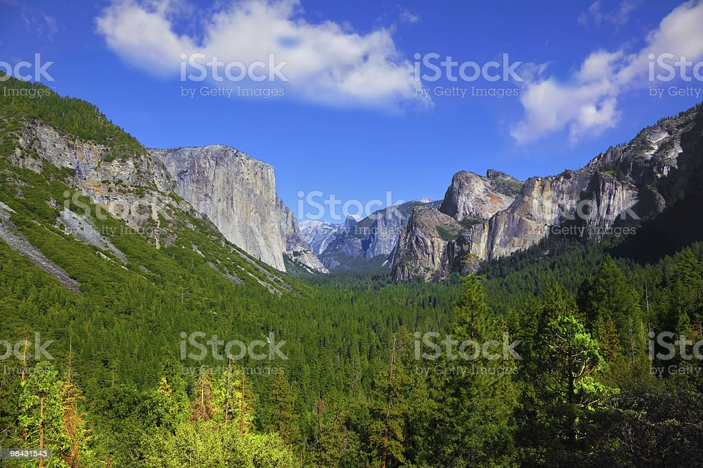 The panorama of park Yosemite royalty-free stock photo