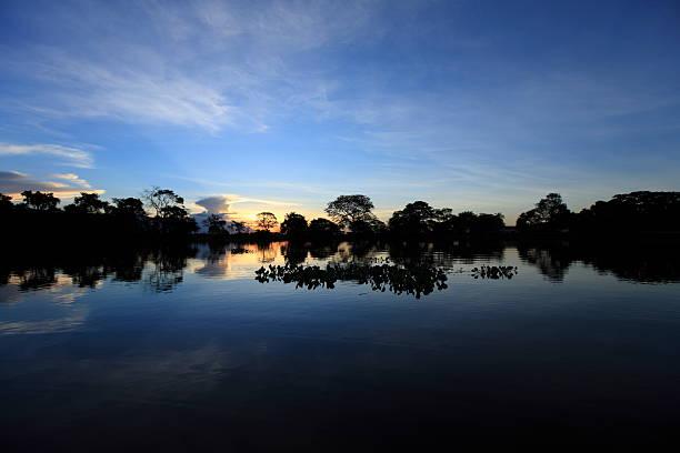 The Pantanal stock photo