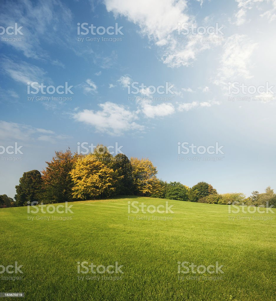 The Park stock photo