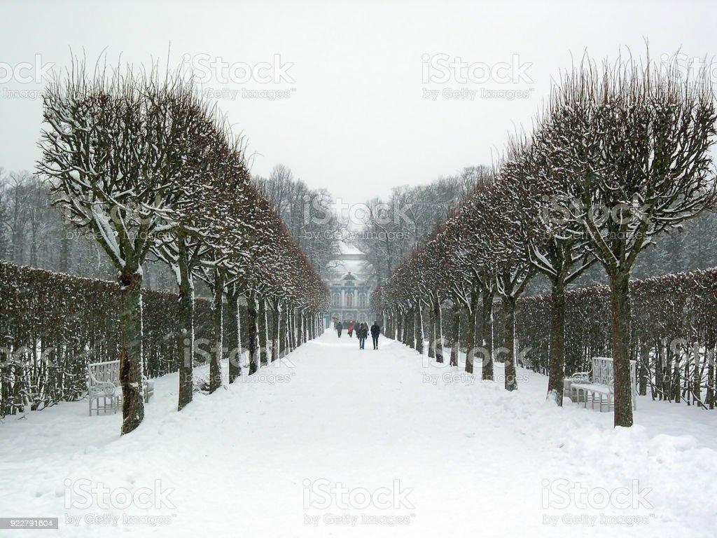 The park surrounding the Catherine Palace, in Tsarskoye Selo (Pushkin), Saint Petersburg, Russia, in wintertime. stock photo