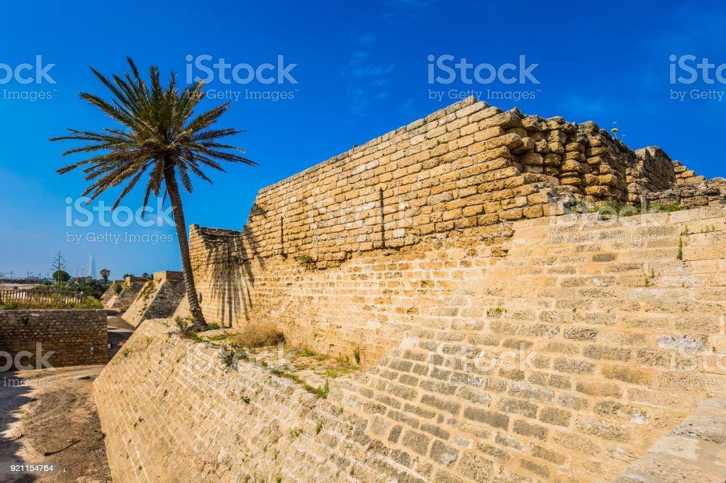 The park-reserve of Caesarea stock photo