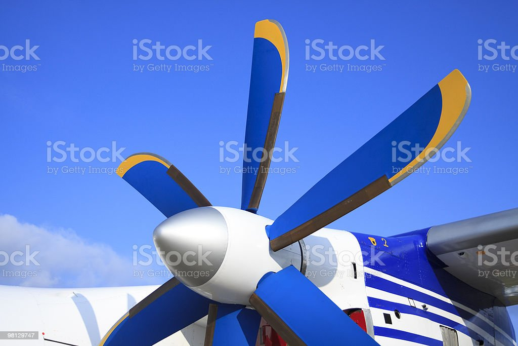 The passenger plane royalty-free stock photo