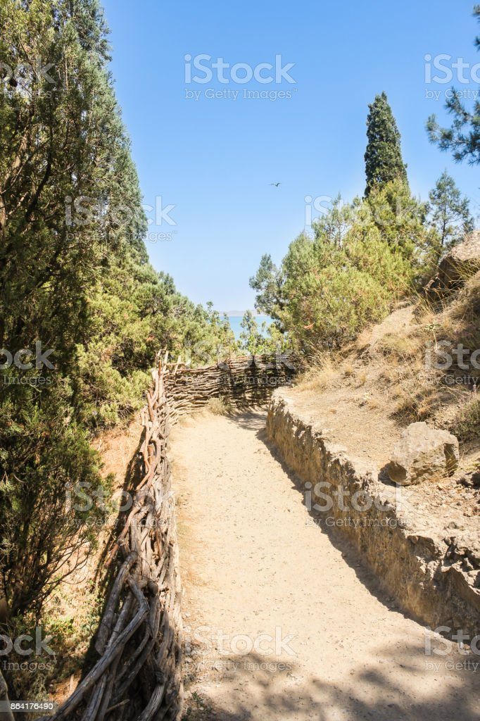 The path leading to the ascent. royalty-free stock photo