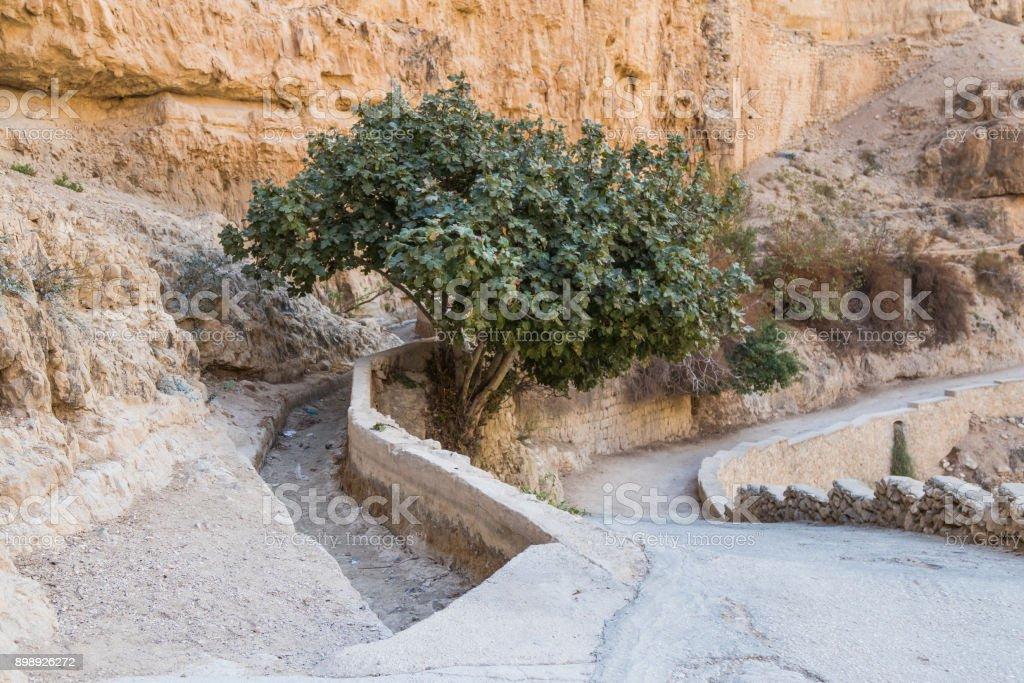 The path  leading to the monastery of St. George Hosevit (Mar Jaris) in Wadi Kelt near Mitzpe Yeriho in Israel stock photo