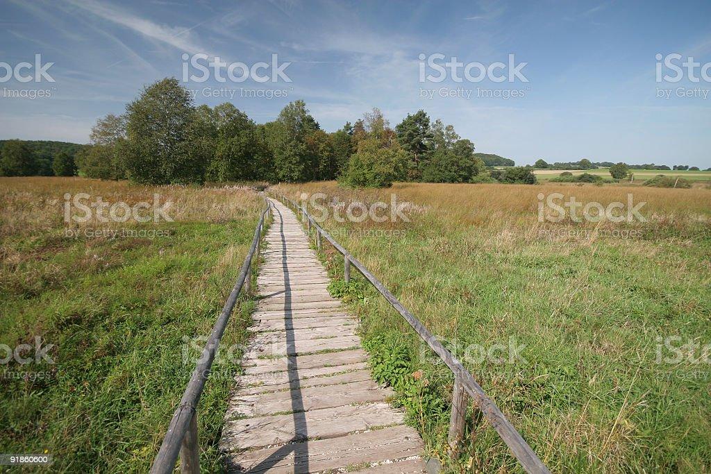 the path stock photo