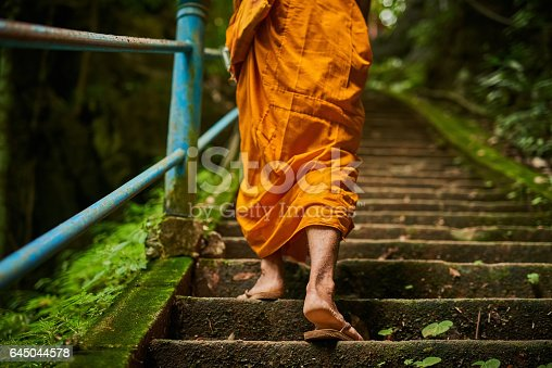 Rearview shot of a buddhist monk climbing a flight of stone steps