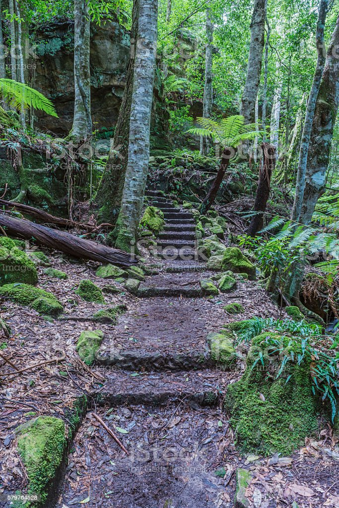 The pathway through the Grand Canyon in the Blue Mountains. stock photo