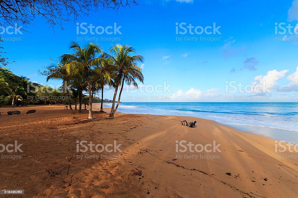 La Perle en Guadeloupe stock photo