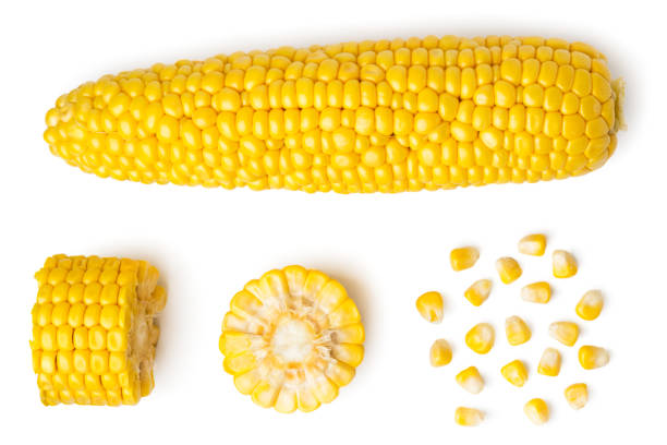 the peeled ear of corn, a piece of and seeds on a white, isolated. the view from the top. - milho imagens e fotografias de stock