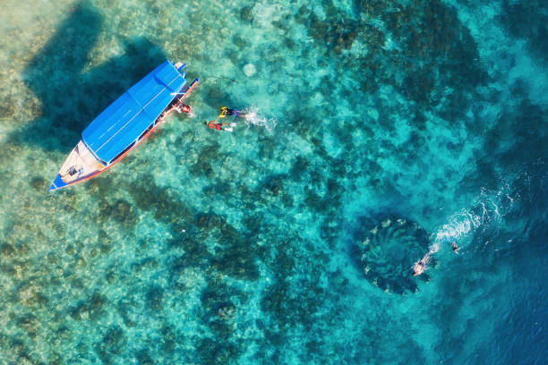 the people are snorkeling near the famous place on gili meno island, indonesia. aerial view. underwater tourism in the ocean. gili meno island, indonesia. travel - image - ломбок стоковые фото и изображения
