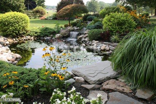 istock the perfect backyard 157329538
