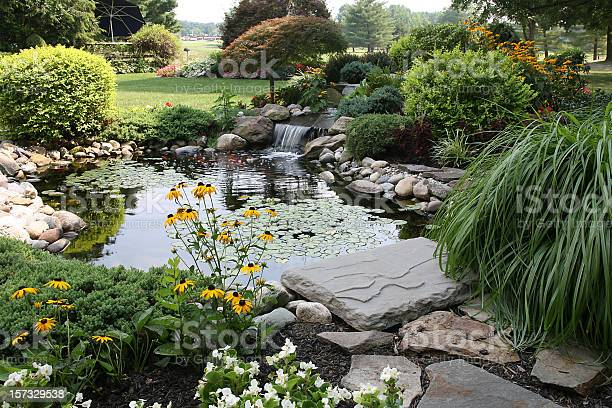 Photo of the perfect backyard