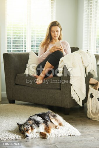 483426960istockphoto The perfect picture of domestic bliss 1137397690