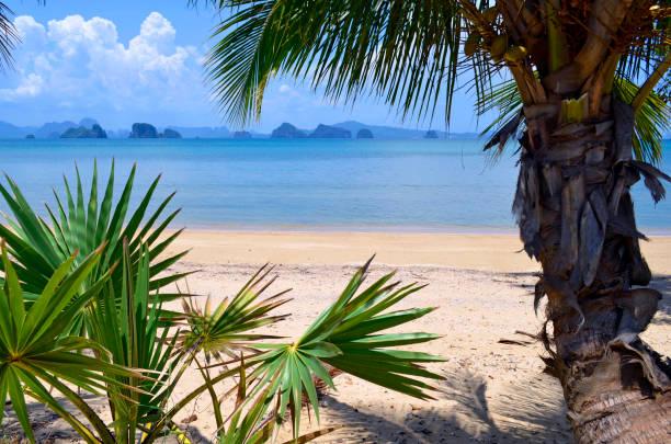 The Phang Nga bay seen from Yao Noi island stock photo