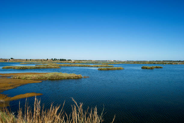 the phenomenon of marismas, the high tide of the ocean in Isla Cristina, in the province of Huelva in Andalusia Spain