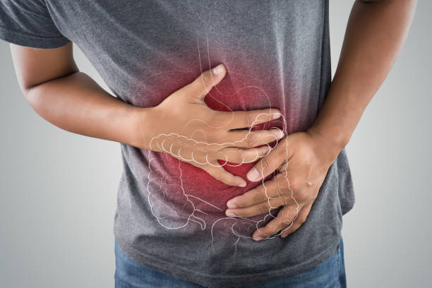 the photo of large intestine is on the man's body against gray background, people with stomach ache problem concept, male anatomy - human intestine stock photos and pictures