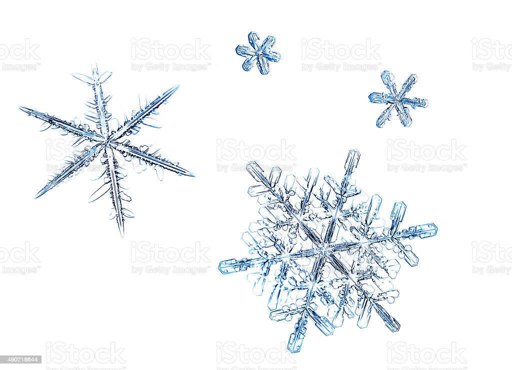 The photo of snowflakes on a white background stock photo