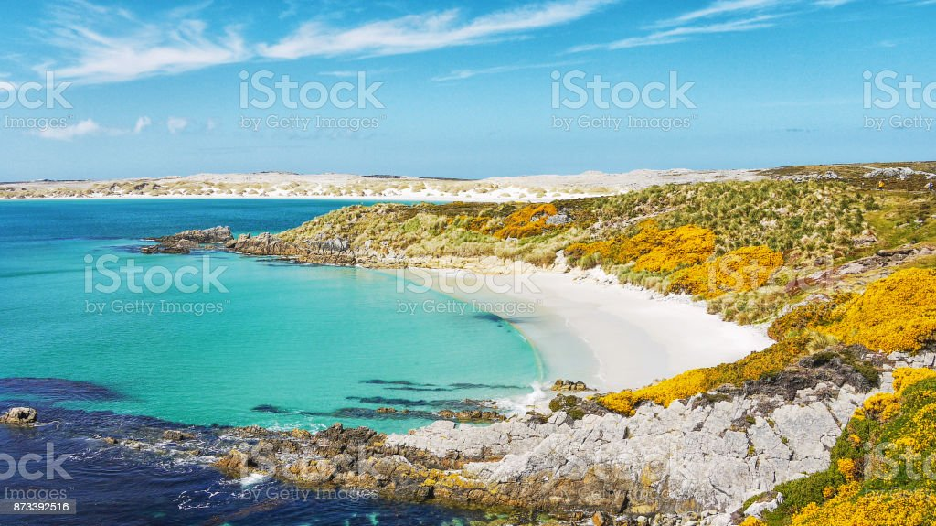 The picturesque white sandy beach at Gypsy Cove on East Falkland Island (islas malvinas). Saturated color. stock photo