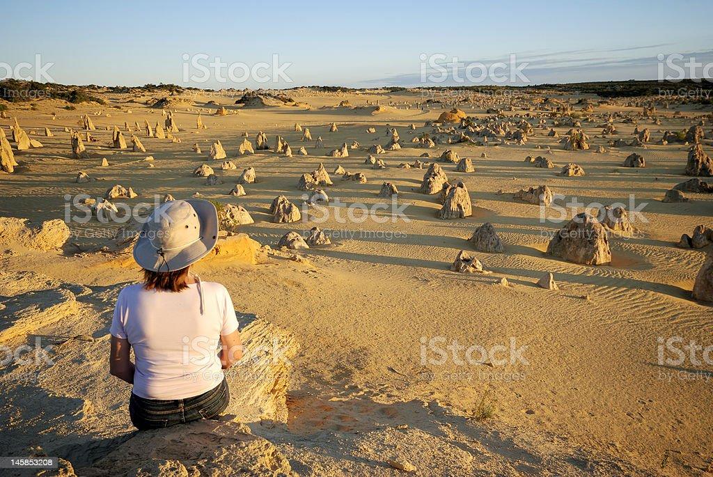 The Pinnacles desert in Australia royalty-free stock photo