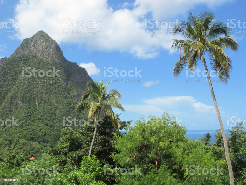 The Pitons, Saint Lucia stock photo