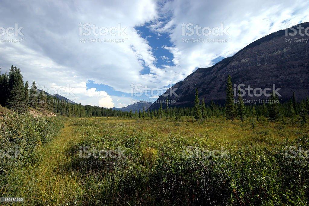 The Plains (Series-three) royalty-free stock photo