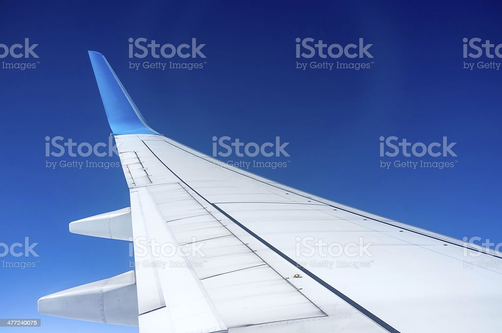The plane's wings royalty-free stock photo