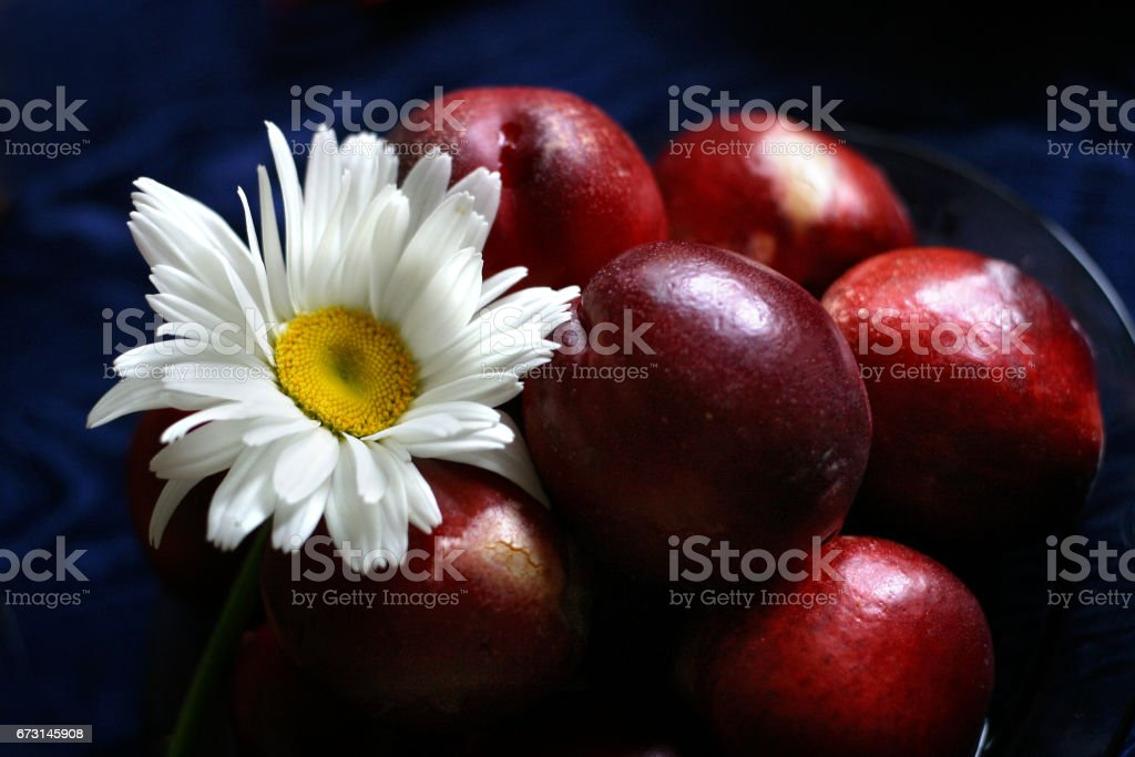 The plate, full fruits with a camomile stock photo