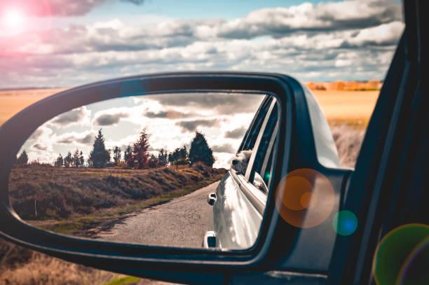 el placer de conducir. bichon turista. - monse del campo fotografías e imágenes de stock