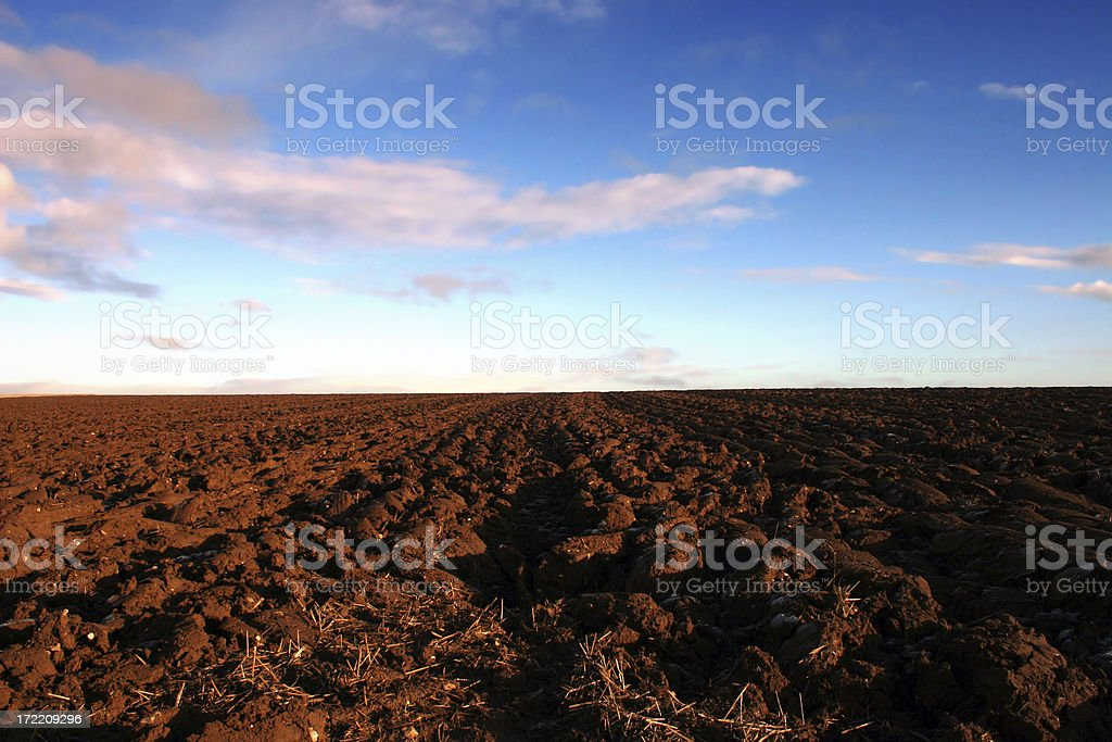 The Ploughed Field royalty-free stock photo